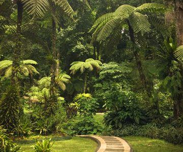 Breng een bezoek aan de Botanische tuinen