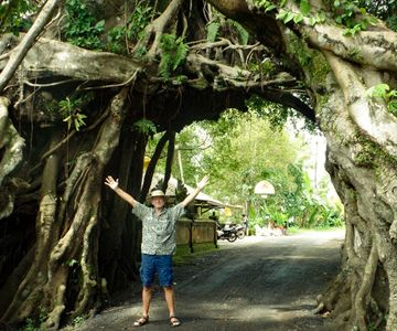 Visit the gate tree Bunut Bolong and other sacred trees