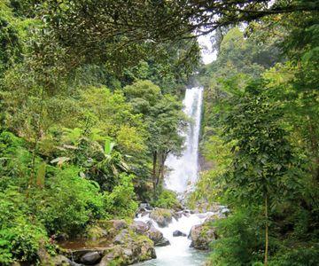 Visit the Munduk Waterfalls