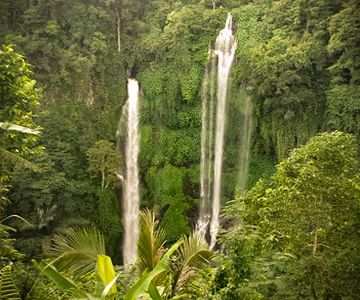 Visit the waterfalls at Sekumpul